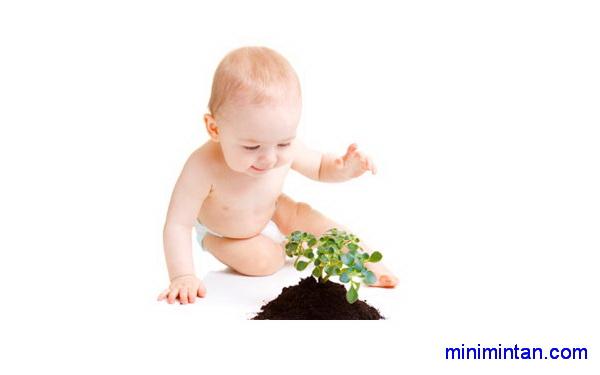 Çocuklarınızı hastalıktan koruyan bitkiler ve çaylar